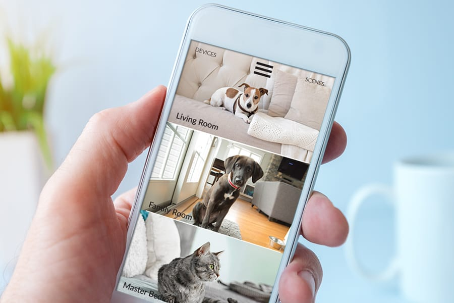 Home automation and smart home systems for pets.